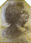 Grotesque Portrait Study of Man